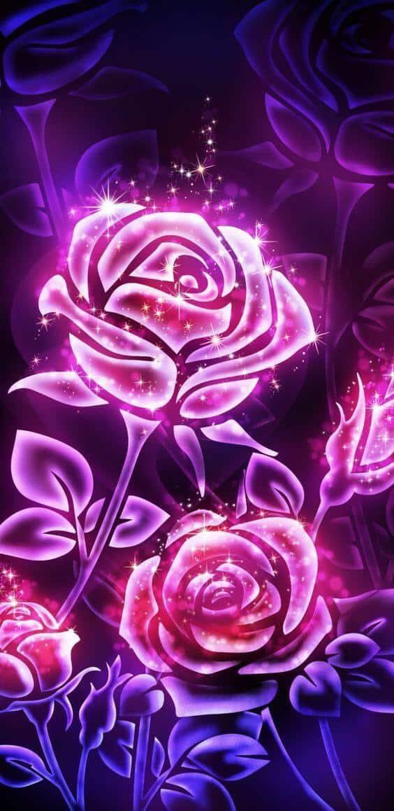 Beautiful Flower Wallpaper  Iphone (Be Mesmerized)